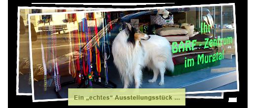 Cat Und Dog Gaggenau